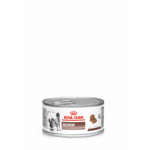 - VHN Cat/Dog konz. Recovery 195g