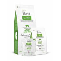 - Care Dog Grain-free Adult LB Salmon+Potato  1kg