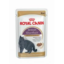 - BRITISH SHORTHAIR 12x85g